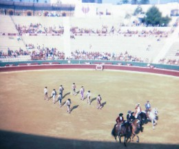 BENIDORM TRAVEL GUIDE BULLFIGHT